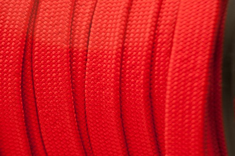plana roja de cerca (1 of 1)